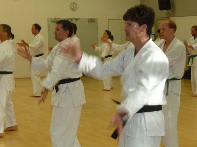 20 Jahre Karate Erlangen Bild 1