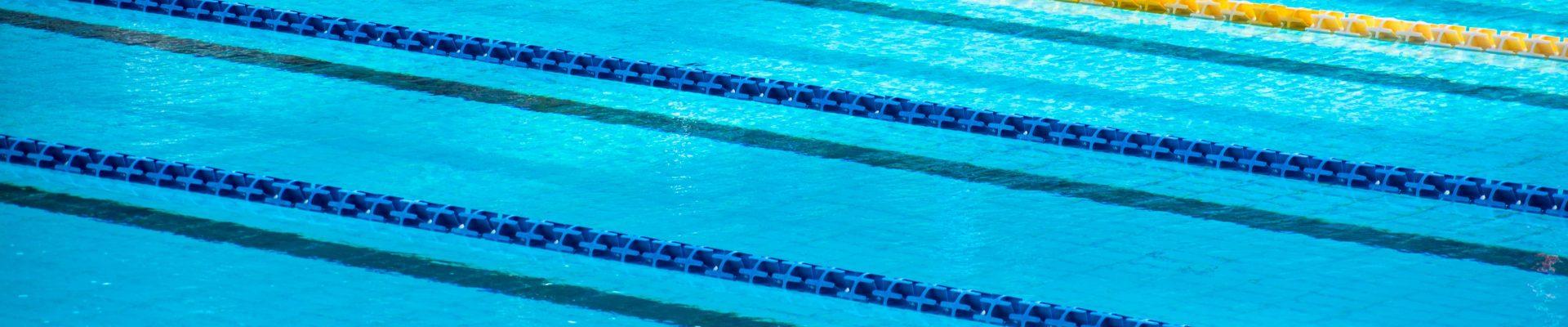From unsplash.com by Serena Repice Lentini